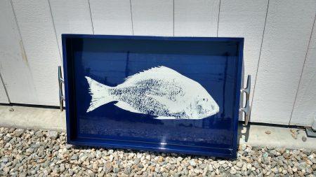 navy-fish